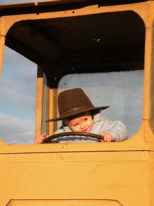 Baby Fergus drives the tractor