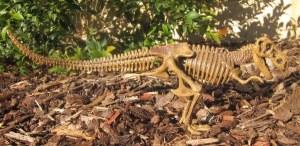 tyrannosaurus camoflage