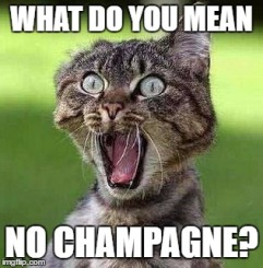 what-do-you-mean-no-champagne