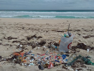 Collected plastic rubbish on beach near Hamelin Bay.jpg