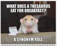 meme-rat